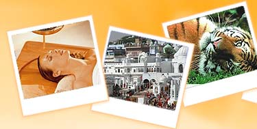 Cochin Tour Packages, Cochin Tour Packages India