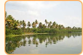 Cochin Tour Packages India
